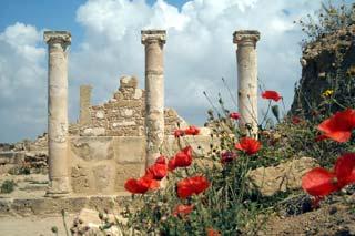 Туры на Пафос
