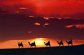Туры в Тунис. Сахара