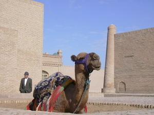 Отдых в Узбекистане. Хива.