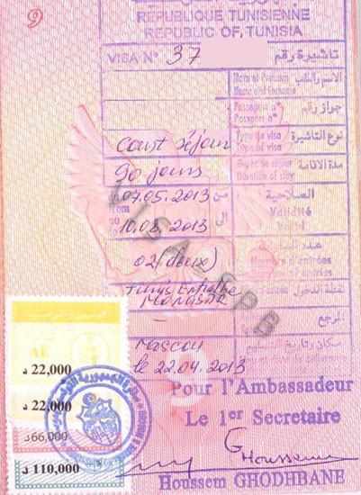 образец заполнения визы в тунис для россиян в 2016 году - фото 6