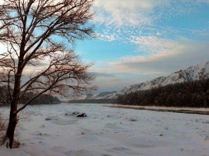 Фото эко-отель ЛесОтель