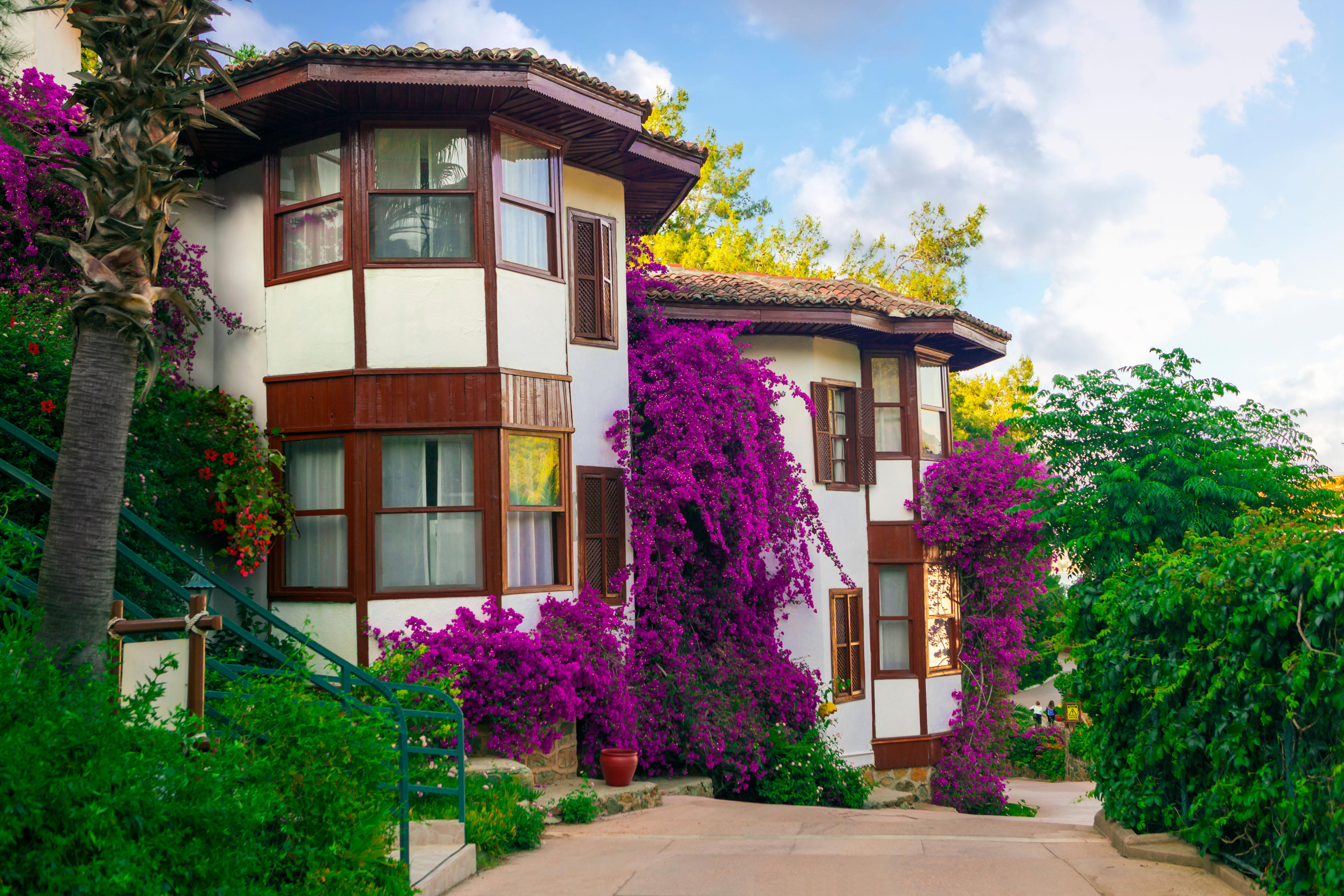 Махмутлар турция класс дом отель