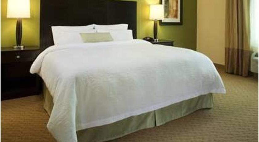 Фото отеля Hampton Inn & Suites Denver South-RidgeGate 3*