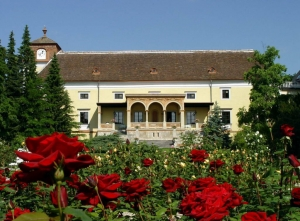 Фото отеля Schloss Weikersdorf Baden Thermal Resort 4*