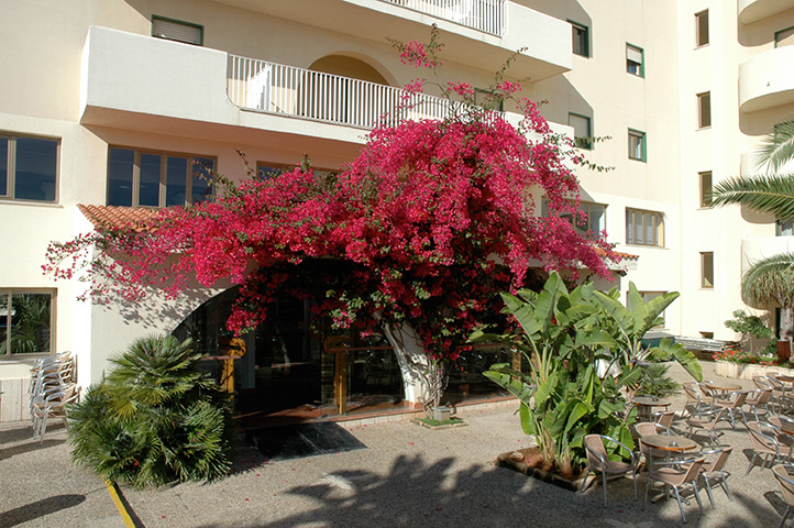 ���� ����� Paradise Beach Resort 3*